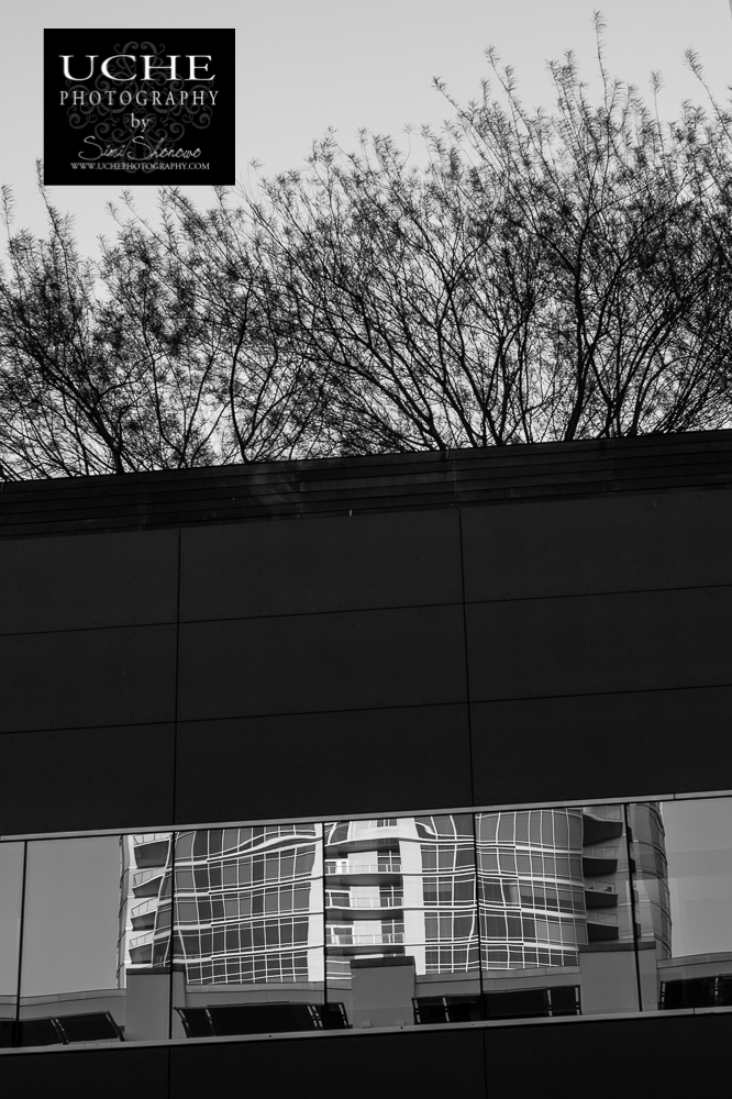 {day 203 project365 2016… the building has hair}