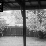 {day 229 project365 2016… back porch rainy day}