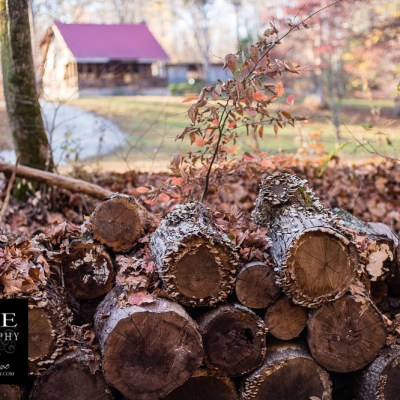 {day 323 project365 2016… cabin wood}