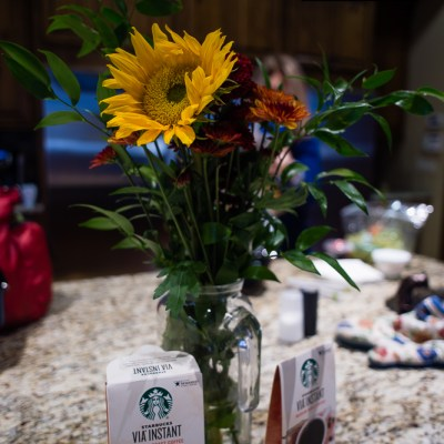 {day 324 project365 2016… center piece}