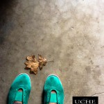 {day 331 mobile365 2016… leaf at green shoes}