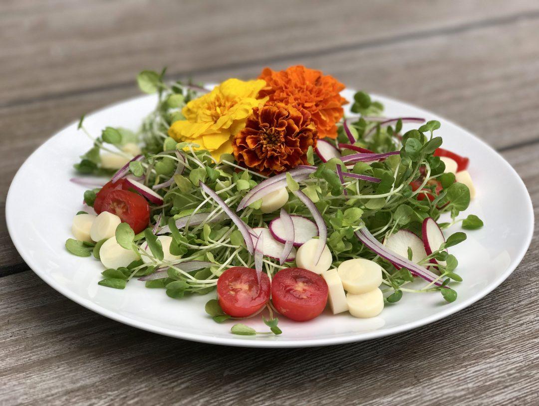 Farmers Market Summer Salad