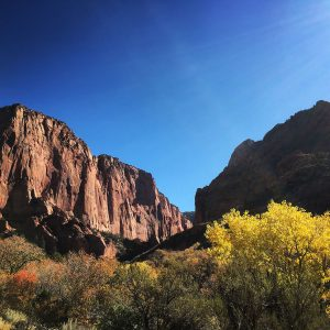 Autumn at the Kolob Canyons at Zion National Park.
