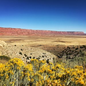 The Vermillion Cliffs in northern Arizona.