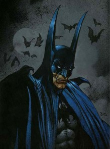 Biz Batman (20)