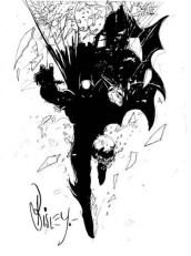 Biz Batman (39)
