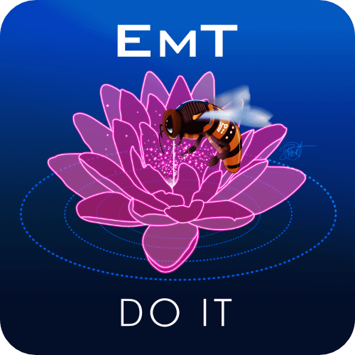 EmT - Do It