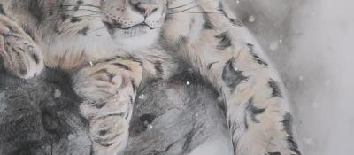 """""""Le Fantôme des Montagnes"""" <br/> 40 x 50 cm <br/> Crayons couleurs et acrylique sur fond blanc"""