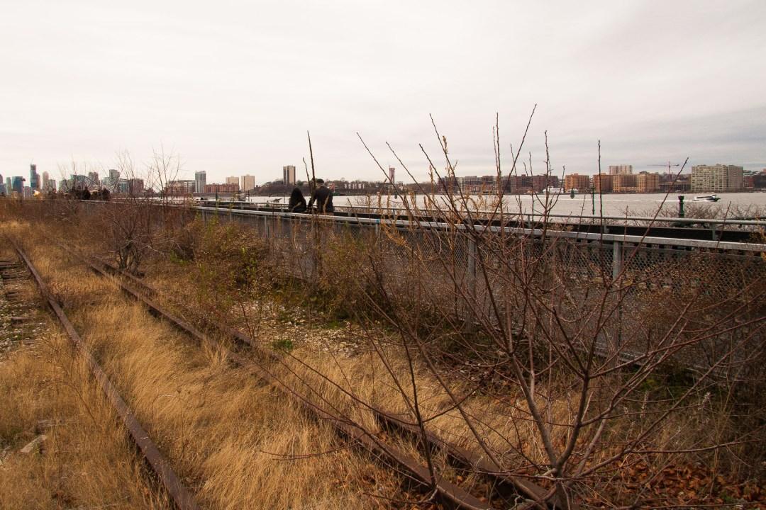 NYC '15 025
