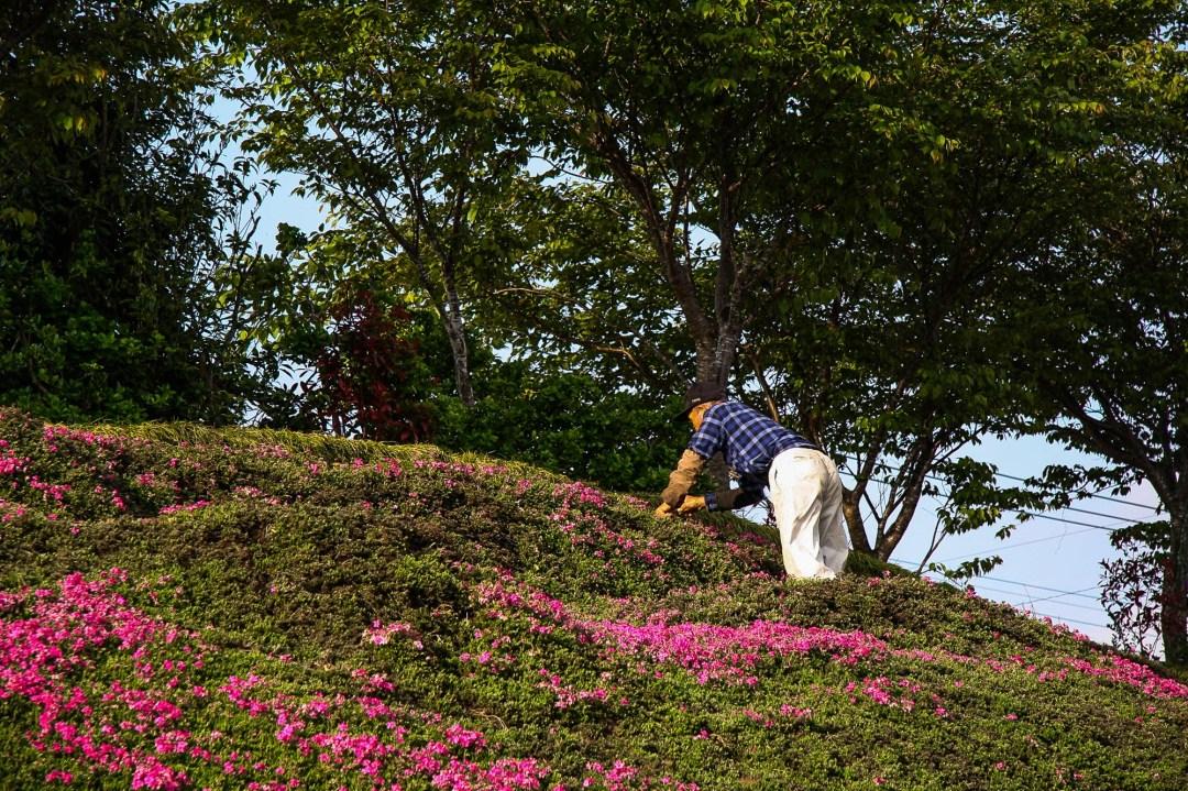 Toshiyuki Kuroki Garden 001
