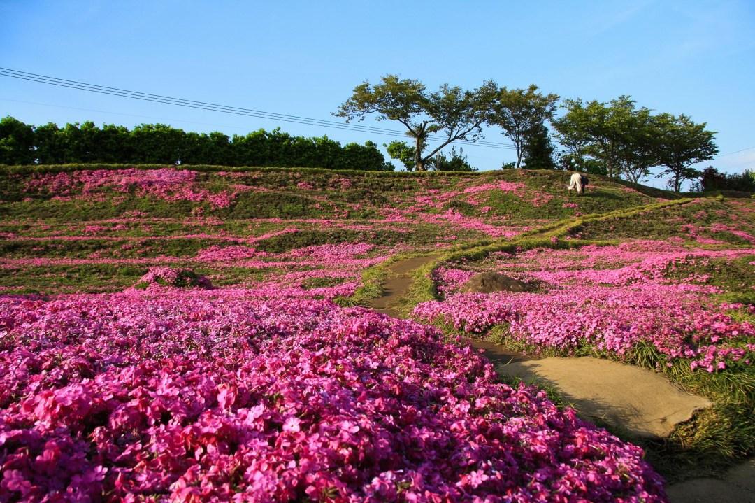 Toshiyuki Kuroki Garden 024