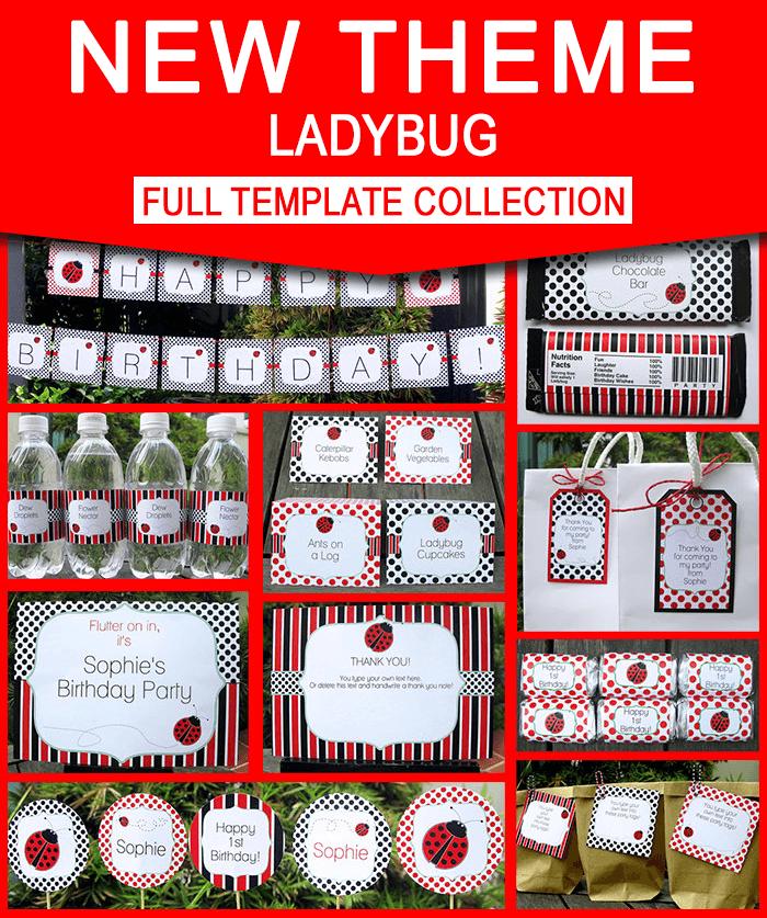 ladybug birthday party invitations decorations