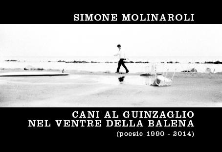 Cani al Guinzaglio nel Ventre della Balena   Simone Molinaroli