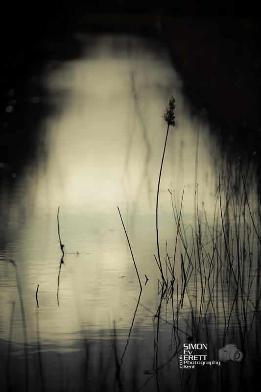 Sittingbourne river