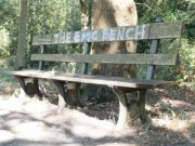 The Epic Bench (0ev)