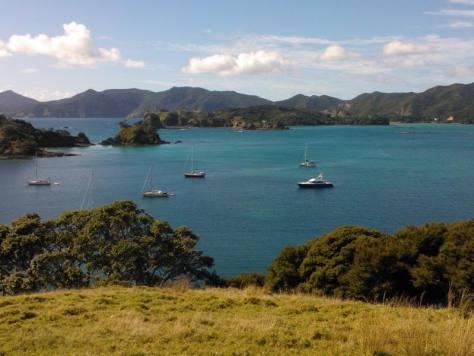 Paihia Bay of Islands