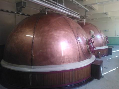 Beers of new zealand speights beer