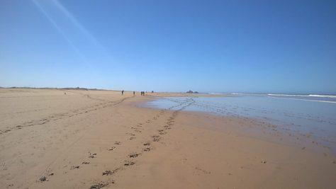 Essaouria beach morocco