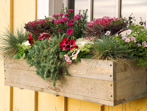 Accent your windows with fall window boxes.
