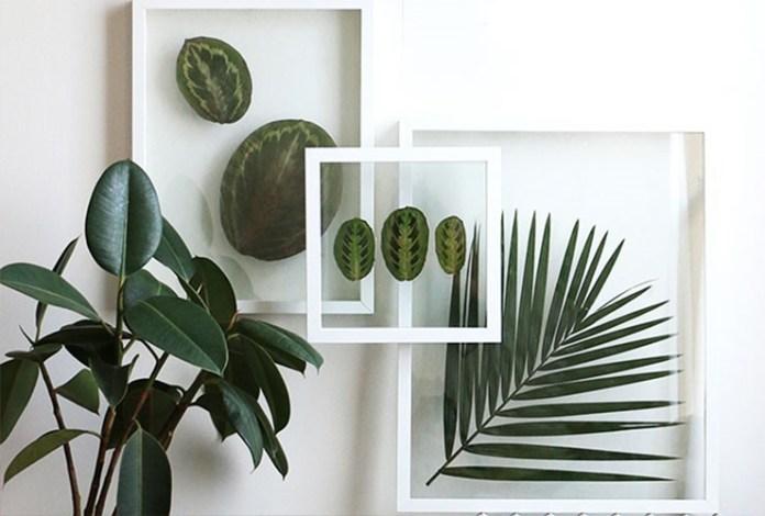 9 Pressed Leaf Frame via simphome