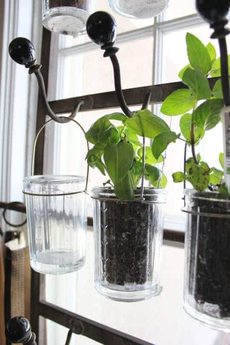 78 Glass Jar Planter via simphome