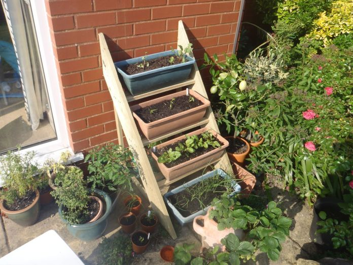 4.Planter Ladder