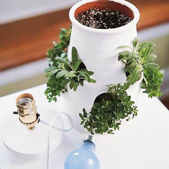 2 Strawberry Jar Lamp via simphome