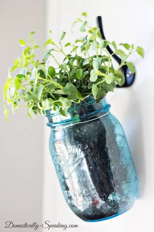 7 Mason Jar Hanging Planter via simphome