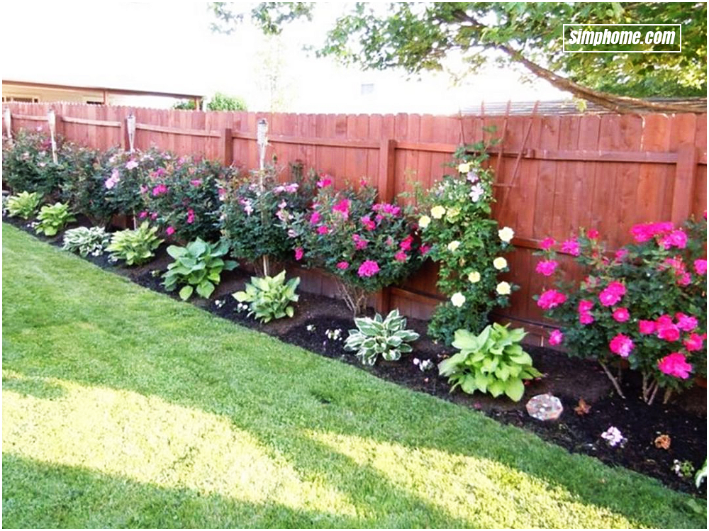 15 Smart Concepts How To Make Backyard Privacy Landscaping Ideas