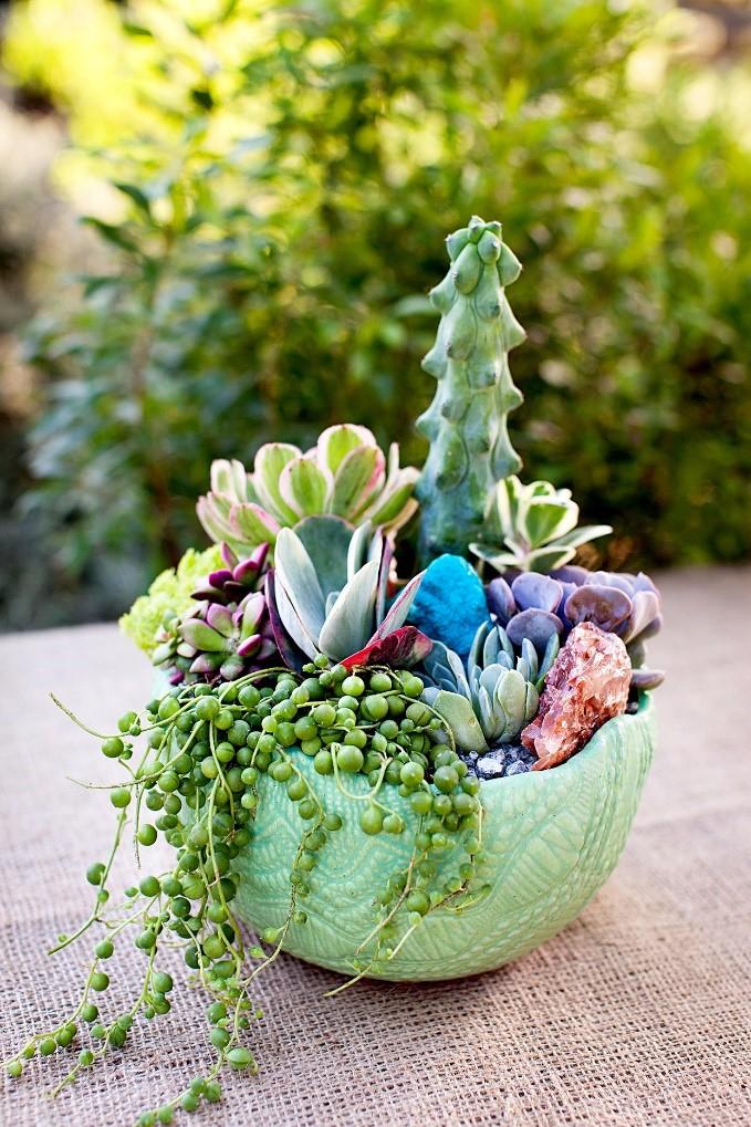 7.Simphome.com Potted Succulent Garden