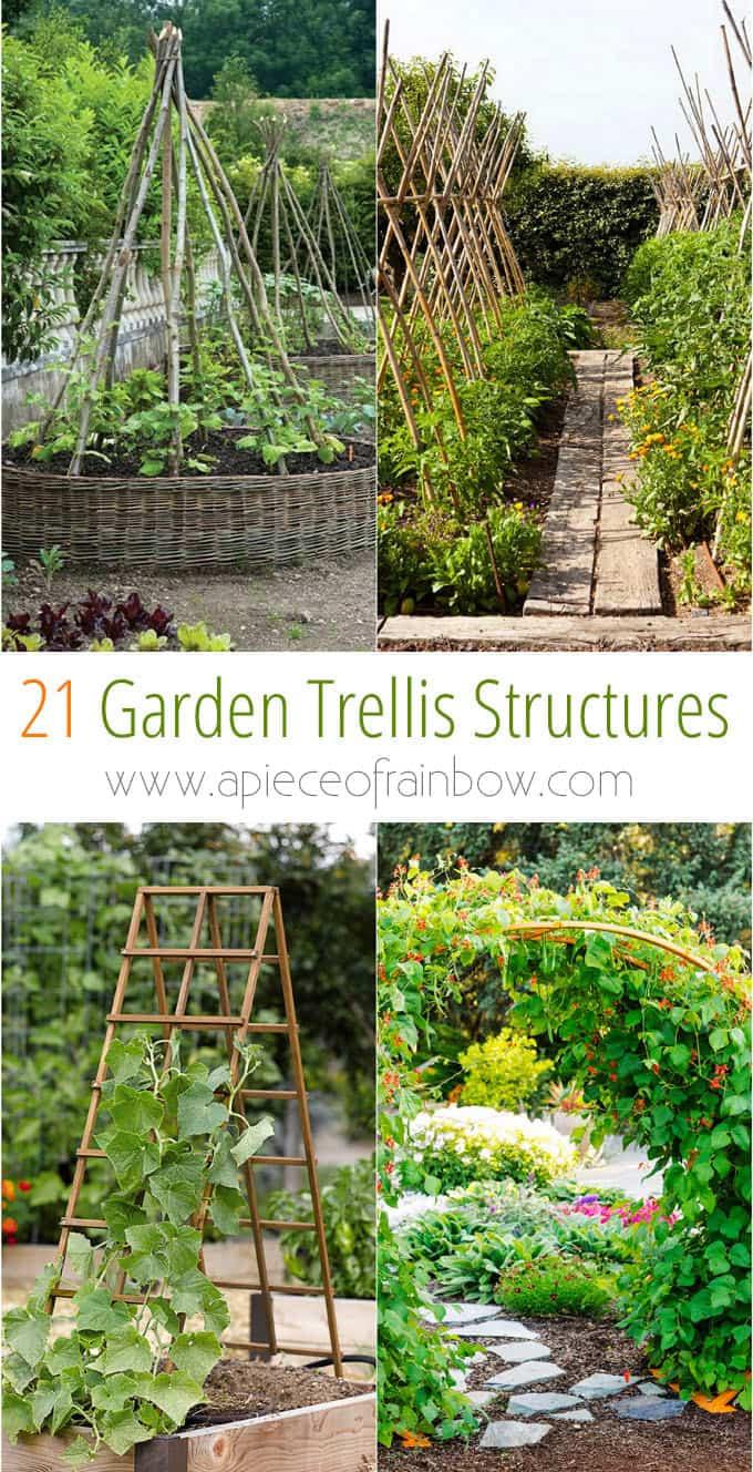 Simphome.com 21 easy diy garden trellis ideas vertical growing structures