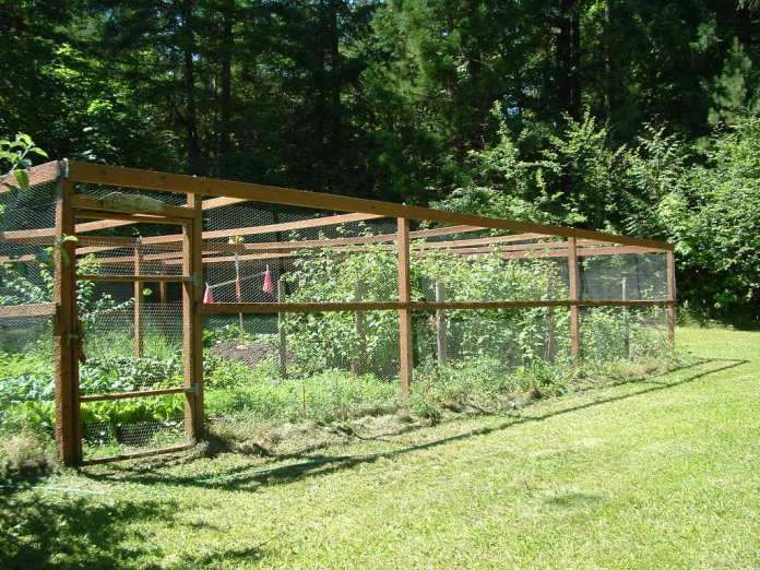 Simphome.com garden fence ideas chicken wire ujecdent with 10 wire garden fencing ideas