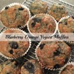 Blueberry Orange Yogurt Bran Muffins