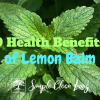 9 Health Benefits of Lemon Balm