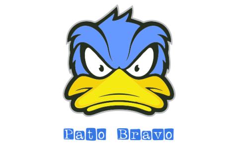 Pato Bravo - Ericeira