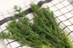 Preserving fresh herbs in the fridge