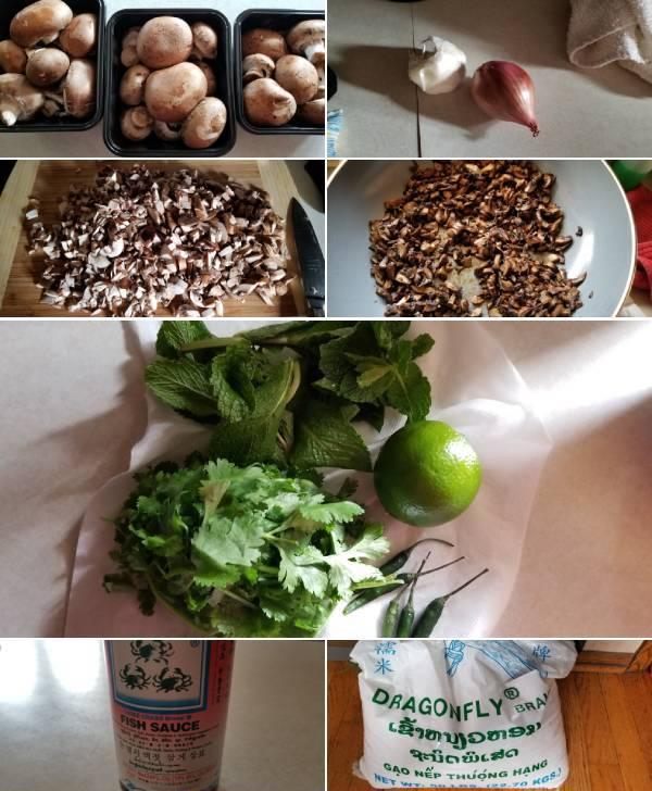Mushroom Laap Recipe Ingredients