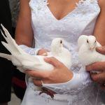 lâcher de colombes mariage