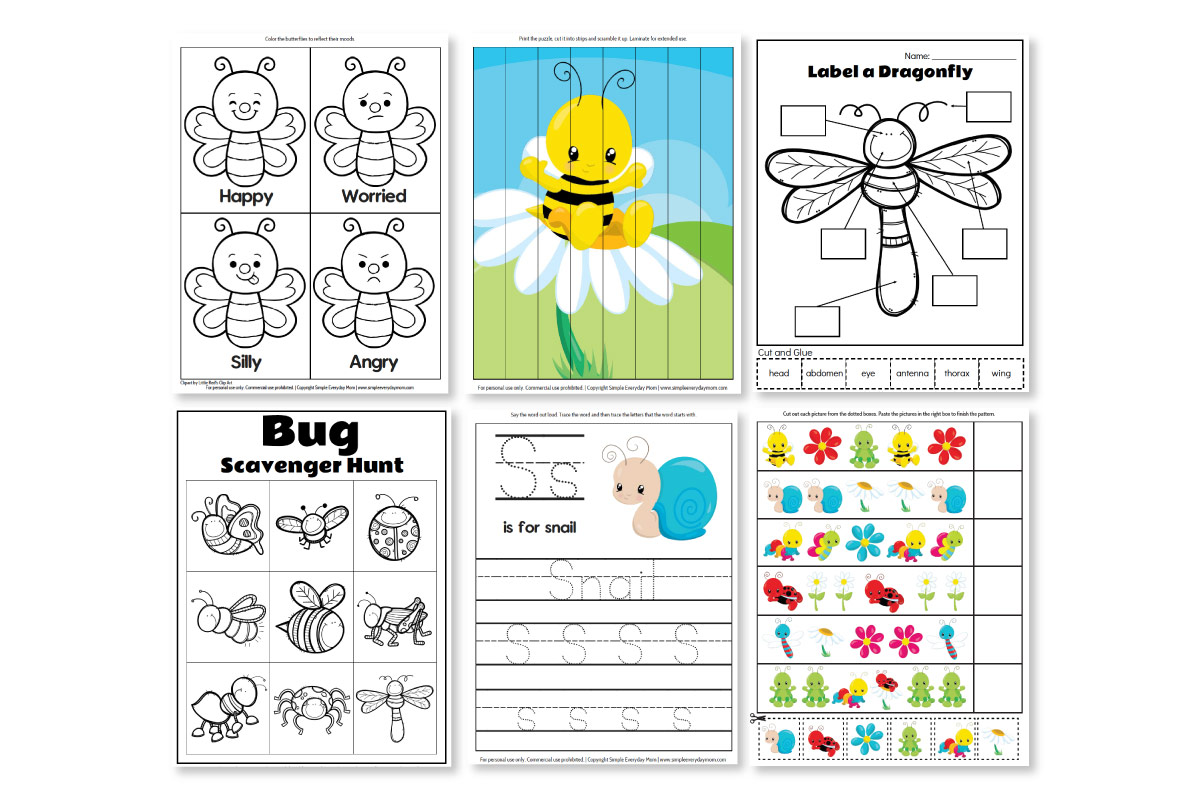 Printable Preschool Bug Activities For Learning Amp Fun