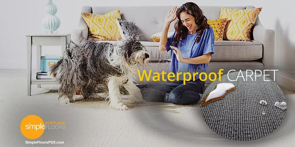 A Carpet That Is 100 Waterproof