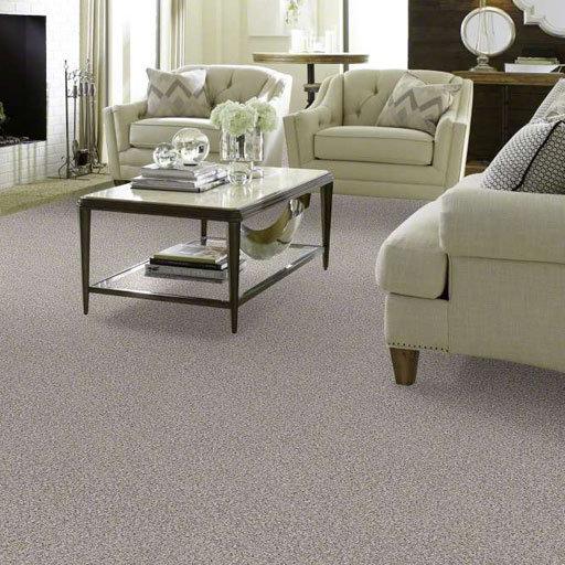 Carpet colors in Portland