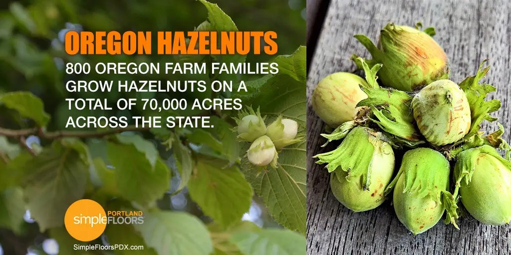 Hazelnuts are Oregon Filberts
