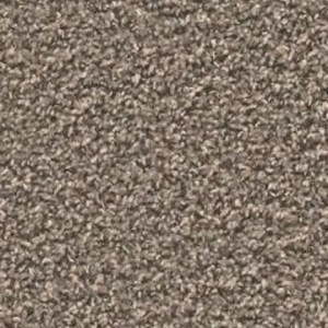 Zion Dome Carpet by Tas Flooring