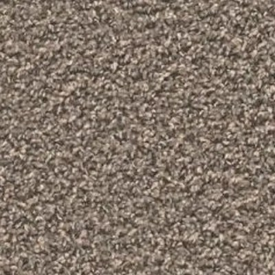 Zion Dome Carpet by Tas Flooring