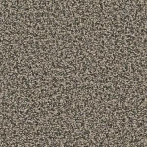 Zion Lava Point Carpet by Tas Flooring