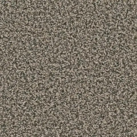 Zion Lava Point Carpet by Tas Flooring