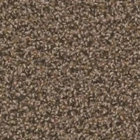 Zion River Carpet by Tas Flooring
