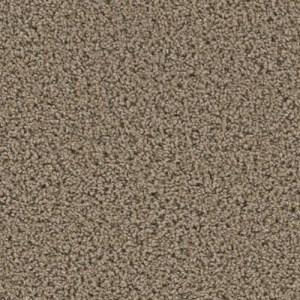 Yellowstone Caldera Carpeting by TAS Flooring
