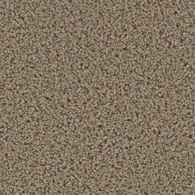 Yellowstone Caldera Carpeting by TAS Flooring