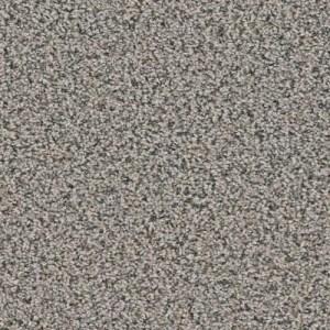 Yellowstone Geyser Carpeting by TAS Flooring